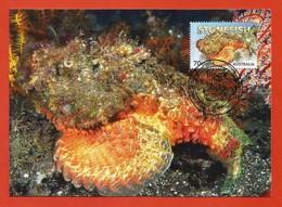 Australien 2014 , Things That Sting - Stonefish - Maximum Card - First Day 23 September 2014 - Maximumkarten (MC)