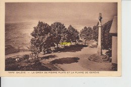 Saleve La Croix De Pierre Plate Et La Plaine De Geneve - France
