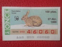 CUPÓN DE ONCE SPANISH LOTTERY LOTERIE SPAIN CIEGOS BLIND LOTERÍA ESPAÑA FAUNA IBÉRICA FAUNE CONEJO RABBIT LAPIN Hase VER - Billetes De Lotería