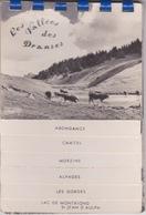 CARNET DE 8 Cartes Postales DES VALLÉES DES DRANSES - ABONDANCE CHATEL MORZINE ALPAGES LES GORGES LAC MONTRIONS ST JEAN - Abondance