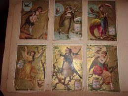 Lot De 6 Liebig   OISEAUX FEMMES PIE FAUVETTE ALOUETTE HIRONDELLE CHOUETTE  FAISAN DORE - Liebig