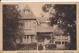 CPA 62 Très Rare CUCQ STELLA PLAGE Villa Les Vieux Pins Architecte Dufour - France