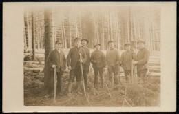 B7757 - Beruf Arbeit - Waldarbeiter Forstarbeiter Forst - Photographie