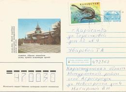 Kazakhstan 1995 Plesiosaurus Prehistory Postal Stationary Cover - Kazakhstan