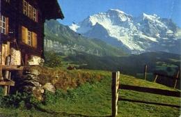 Bei Wengen Jungfrau - Formato Grande Viaggiata Mancante Di Affrancatura – E 7 - Cartoline