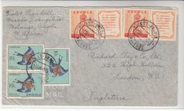 Angola / Airmail / Birds / Fatima / Religion - Angola