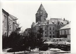 Orig.-Foto - KORNEUBURG - Christbaumverkauf Am Hauptplatz 1969 - Korneuburg