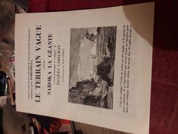 2 Feuillets Publicitaire Des Editions Le Terrain Vague 2 Fois 4 Pages Aventures De Jodelle & Saroka La Geante - Affiches & Offsets