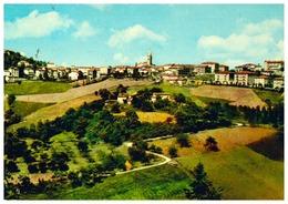 ZOCCA - Modena