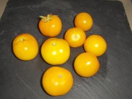 30 Graines Tomates JAUNE GOUTTE D'OR BIO - 2. Graines