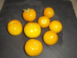 30 Graines Tomates JAUNE GOUTTE D'OR BIO - 2. Seeds
