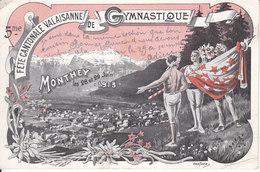 5e FÊTE CANTONALE VALAISANNE DE GYMNASTIQUE - MONTHEY 1913 - ILLUSTRATION - ( PLIS) - 1914 - VS Valais