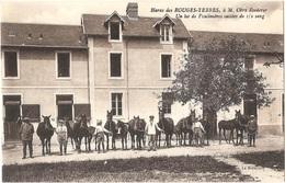 Dépt 61 - SAINT-LÉONARD-DES-PARCS - Haras Des ROUGES-TERRES, à M. Obry Roederer - Un Lot De Poulinières... - (chevaux) - France