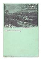 0-5630 HEILIGENSTADT, Bahnhof Heiligenstadt, Mondscheinkarte Ca. 1900. Eckknick - Heiligenstadt