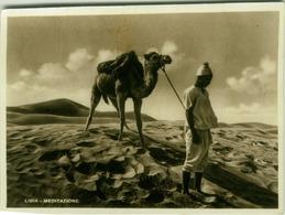 AFRICA - LIBIA / LYBIA - MEDITATION - MAN & CAMEL - EDIT ALI BEN OTMAN - 1930s ( BG345) - Libya