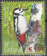 Latvija 2016 Oiseau Pic épeiche O Cachet Rond - Lettonie