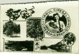 ROMANIA -  Targul Cireselor - Ciresoaia Branistea - VINTAGE POSTCARD ( BG355) - Romania