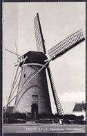 Ca. 1960 Nieuwe Tonge Korenmolen Oranjeboom Z/W Ongebruikt - Nederland