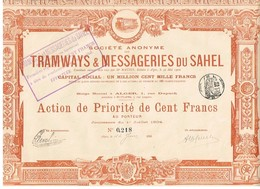 Ancienne Action - Sté Anonyme Tramways & Messageries Du Sahel - Titre De 1904 - Alger - Chemin De Fer & Tramway