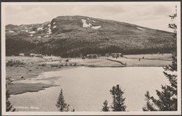 Teveldalen, Trøndelag, C.1950 - Roting Foto Vykort - Norway