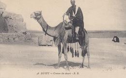 ÉGYPTE. Environ 165 Cartes Postales. - Postcards