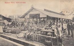 SINGAPOUR, Malaisie Et Inde. Ensemble 62 Cartes Postale - Postcards