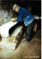BERGER PREPARANT SON FROMAGE PHOTO DE BREUIL LAUTARD BELLE Cpsm 150X105 ANIMEE Bon état Voir Scans - Corse