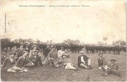 30 - MOEURS PROVENÇALES - Groupe De Jeunes Gens Devant Les Taureaux -  Éditeur à Aimargues - Correspondance Militaire - Unclassified