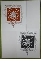 2 Ex-libris Illustré Italie XXème - GIULLIANA BORRA  Par Cesari - Fleur - Ex-libris