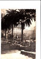 BASTIA UN COIN DE LA VILLE Cpsm 150X105  En état Voir Scans - Bastia