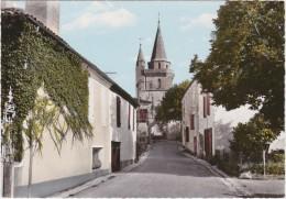 Br - Cpsm Grand Format STE COLOMBE En BRUILHOIS (Lot Et Garonne) - Rue De L'Eglise - France