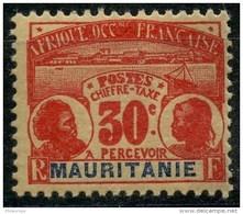 Mauritanie (1906) Taxe N 13 * (charniere) - Mauritanie (1906-1944)