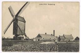 GHELUWE KOELENBERG - Wervik