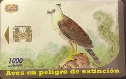 Telefonkarte Costa Rica - Vogel , Bird - Costa Rica