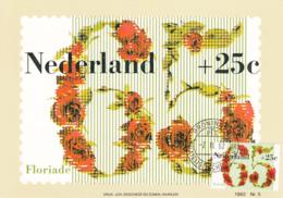 Netherlands 1982 Maxicard Scott #B579 65c + 25c Roses Floriade '82 - Cartes-Maximum (CM)