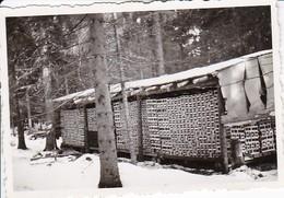 Foto Munitionslager Im Wald Im Winter -  2. WK - 8*5,5cm (36770) - Oorlog, Militair