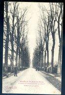 Cpa Du 59 Lommelet Marquette Lez Lille Maison De Saint Jean De Dieu Avenue De 250 Mètres   SEPT18-20 - Lille