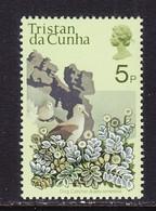 TRISTAN  DA  CUNHA  168    **  FLOWER  DOG  CATCHER - Tristan Da Cunha