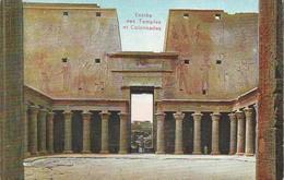 Entrée Des Temples Et Colonnades - Egypt