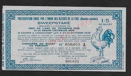 MILITARIA ANCIEN BILLET DE LOTERIE PARTICIPATION EMISE UNION DES BLÉSSÉS DE LA FACE GUEULES CASSÉES 1935 : - Billets De Loterie
