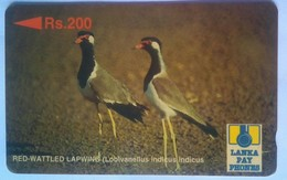 21SRLF Red Wattled Lap Wing Rs 200 - Sri Lanka (Ceylon)
