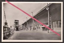 76 LE HAVRE -- Quai Johannès Couvert (Gare Maritime) + Tampon Visite Du Paquebot S/S Liberté Le 15 Août 1950 De La CGT. - Le Havre