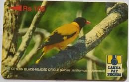 21SRLC Black Headed Oriole Rs 100 - Sri Lanka (Ceylon)