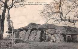 DOLMENS & Menhirs  - Monument Megalithique Classé 2 éme De France à RETIERS ..animée - Dolmen & Menhirs