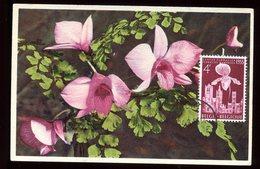 Belgique - Carte Maximum 1956 - Fleurs - O 192 - Maximum Cards