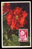 Belgique - Carte Maximum 1956 - Fleurs - O 193 - Maximum Cards
