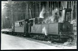 Photo Cartonnée Type CPA - Tramway De Corrèze (T.C.) - Rame Mixte En Forêt Avec Locomotive 030T - Voir 2 Scans - Trains