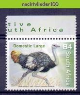 Nev078 FAUNA STRUISVOGELS BIRDS VÖGEL AVES OISEAUX SOUTH AFRICA 2007 PF/MNH - Struisvogels
