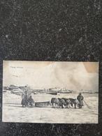 Russia / Archangelsk - Archangel Door NLer Verzonden Naar Baron Van Randwijck 1909 Met Mooi Verhaal /vlekig - Rusland