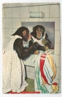 """Ritratto Di Scimmia """"Toilet"""" - Animali Abbigliati"""